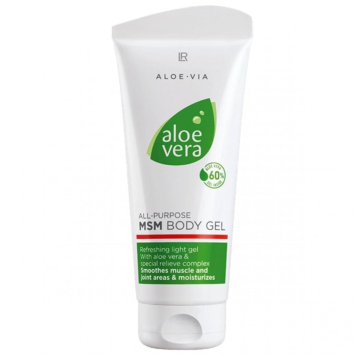 枯渇するオーナー勢いL R アロエベラMSMボディジェル美容や化粧品、滑らかな、迅速な吸収ゲル%60アロエベラ200ミリリットル