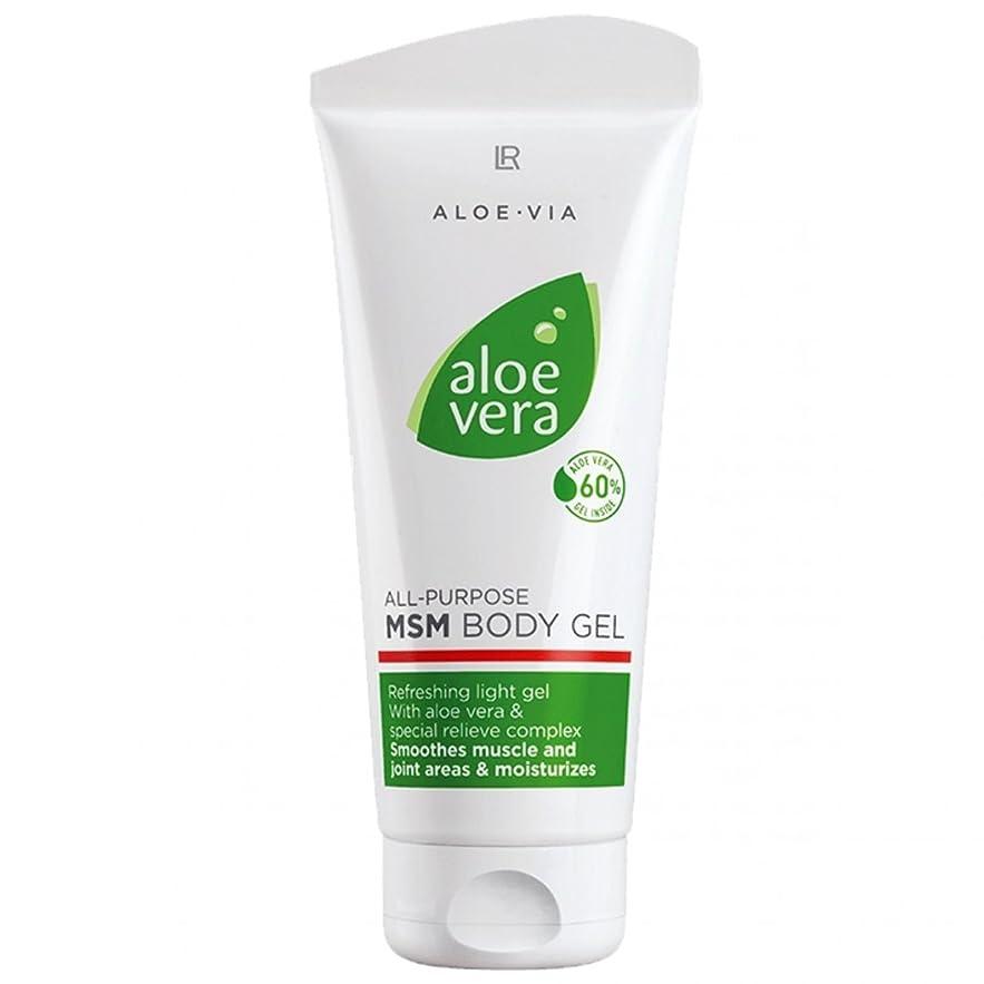 銛みがきます煙L R アロエベラMSMボディジェル美容や化粧品、滑らかな、迅速な吸収ゲル%60アロエベラ200ミリリットル