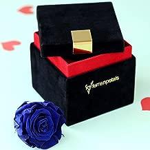 Ferns N Petals Royal Forever Blue Rose in Velvet Box for Birthday gift/Anniversary gift/Valentine's day gift/Wedding Gift/Housewarming Gift