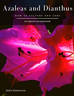 Azaleas and Dianthus: How to culture and care