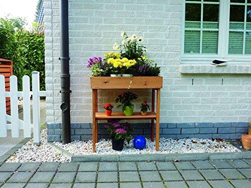 Promadino Balkonbeet Dekoratives Blumenbeet Holz imprägniert Garten