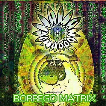 Borregomatrix