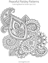 Peaceful Paisley Patterns 1 & 2: Coloring Book for Grown-Ups
