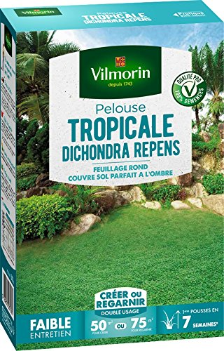 Vilmorin 4346012 Pelouse Tropicale Dichondra Repens, Vert, 500 g
