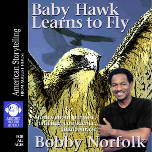Baby Hawk Learns to Fly audiobook cover art