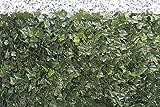 VERDELOOK Sempreverde Point, Siepe Artificiale 1x3 m, Foglia edera, Decorazioni Giardino