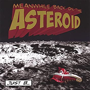 Meanwhile, Back on the Asteroid