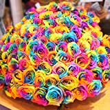 レインボーローズ 七色のミラクルローズ 100本の花束 オランダから空輸  花言葉「奇跡」メッセージカードあり