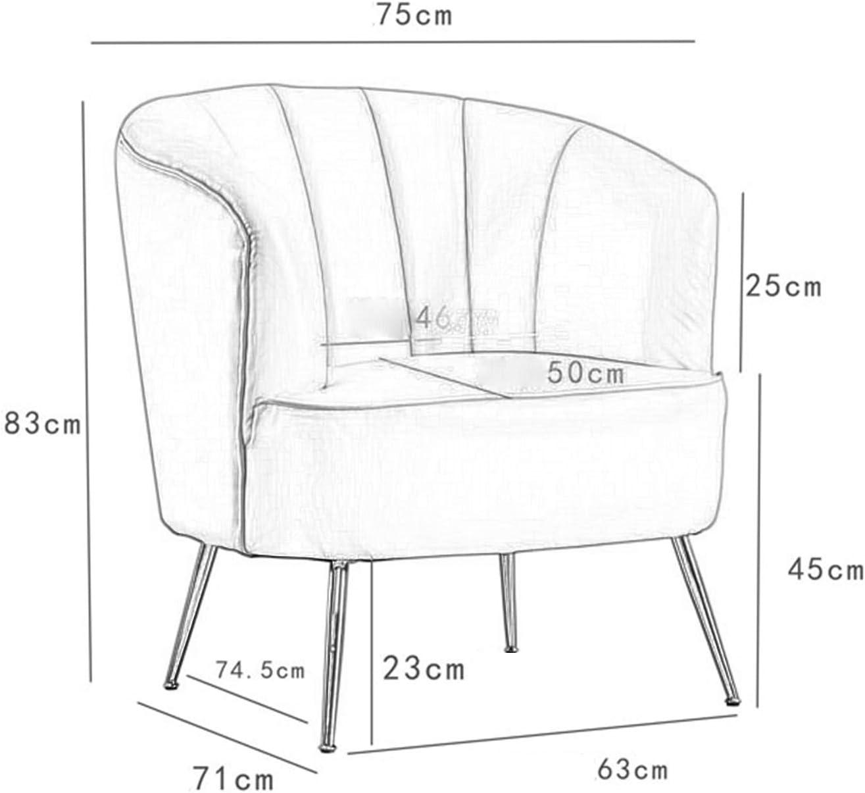 Chaise De Canapé pour Une Personne, Fauteuil De Salon en Métal Coriace, Flanelle élargit La Chaise à Dossier Récréatif Rose 1111S(Color:Noir) Rose (Flanelle)