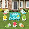 Big Dot of Happiness Honk, It's My Birthday - Yard Sign and Outdoor Lawn Decorations - Birthday Party Parade Yard Signs - Set of 8