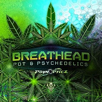 Pot & Psychedelics