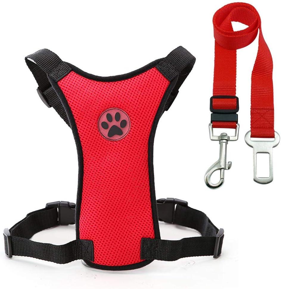 Phoenix Mall Dog seat Belt and Chicago Mall Leash Set Safety Car Harness pet