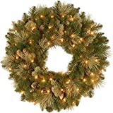 National Tree Company Pre-lit Artificial Christmas Wreath | Flocked with Cones and Pre-strung White Lights | Carolina Pine - 24 Inch