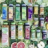 LiveFresh® Probierpaket ALLE Säfte & Shots [16 Säfte] - frisches Obst & Gemüse wie Ingwer,...