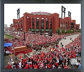 Best st louis cardinals world series parade 2011 Reviews