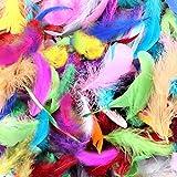 Plumas Manualidades De Colores, 500 Piezas Natural Plumas de Ganso Pluma Artificial, Pluma para Disfraces, Atrapasueños, Pendientes de Bricolaje, Artesanía, Fiesta en Casa, Boda Decoraciones
