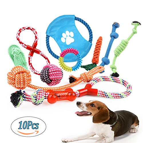 Dog Rope Toys Set, 10 Pieces of Pet Chew Rope Toys Including Rope Carrot, Dog Rope Balls, Rope Bone, Rope Tug Durable Puppy Toys for Small Medium Large Dogs