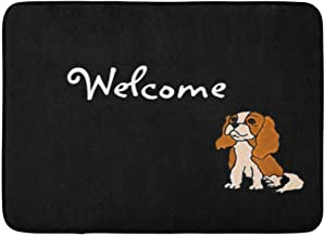 Custom Doormats Funny Cavalier King Charles Spaniel Home Door Mats Entrance Mat Floor Rug Indoor/Outdoor/Front Door/Room M...