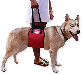 Love Pets Love Vet Approved Dog Lift Support Harness Canine aid. Lifting Older K9 Handle Injuries, Arthritis Weak hind Legs & Joints. Large/X-Large Breed Assist Sling Mobility & Rehabilitation