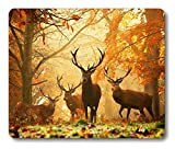 Smooffly Wildlife Gaming Mouse Pad,Milu Deer Mouse Pad
