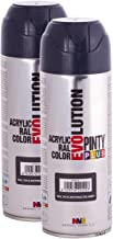 Fast Dry, Low Odor, Low VOC - Acrylic Spray Paint PintyPlus Evolution - Pack of 2 (Anthracite Gray)