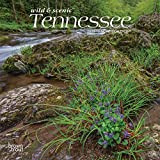 Tennessee Wild & Scenic 2020 7 x 7 Inch Monthly Mini Wall Calendar, USA United States of America Southeast State Nature