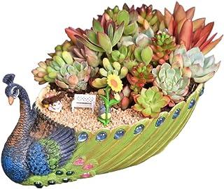 Worila Handmade Peacock Succulent Planter Pot Vintage Cactus Planter Flower Pot Succulent Container Decorative Succulent P...