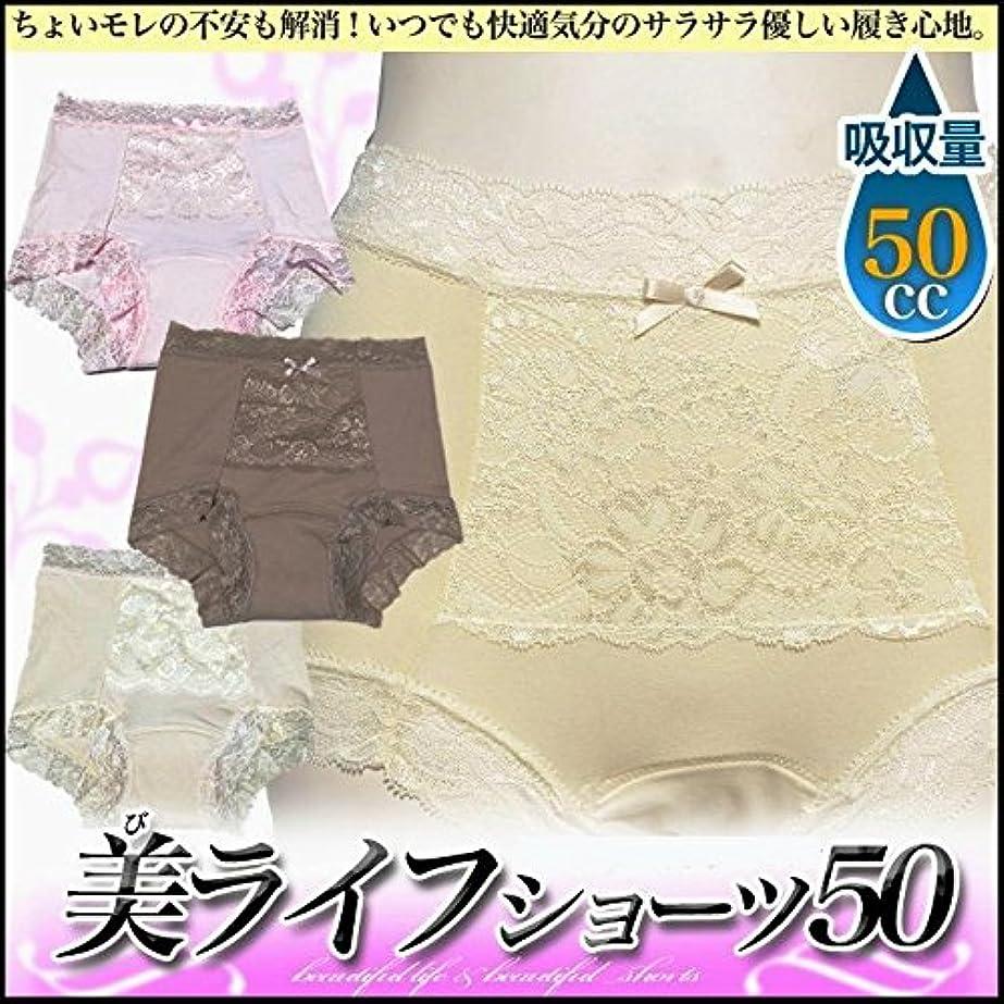 待って対象透けて見える女性用 尿漏れ対策ショーツ 50cc吸収 2枚組 sk200 (LL ヒップ97cm~105cm, ピンク)