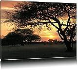 afrikanische Savanne im Dämmerlicht Leinwand, XXL riesige