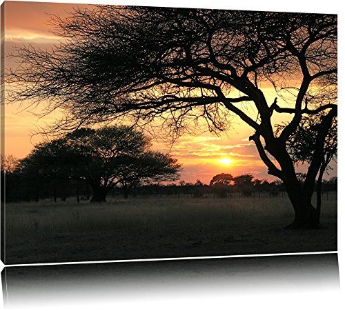 afrikanische Savanne im Dämmerlicht Leinwand, XXL riesige Bilder fertig gerahmt mit Keilrahmen, Kunstdruck auf Wandbild mit Rahmen, günstiger als Gemälde oder Ölbild, kein Poster oder Plakat Format: 100x70 cm
