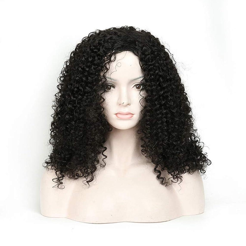 新しさ魅惑するスカートYAHONGOE 人工毛アフリカブラックロングカーリーウィッグ18インチ女性用デイリードレスパーティーウィッグ (色 : 黒)