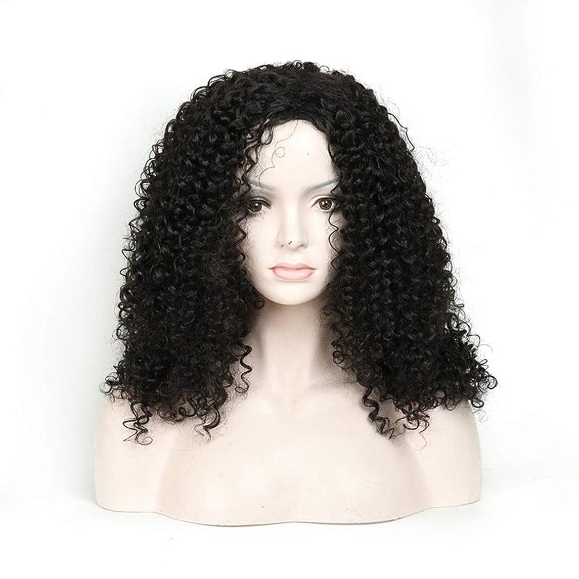 デッドロックくるくるゲートMayalina 人工毛アフリカブラックロングカーリーウィッグ18インチ女性用デイリードレスパーティーウィッグ (色 : 黒)