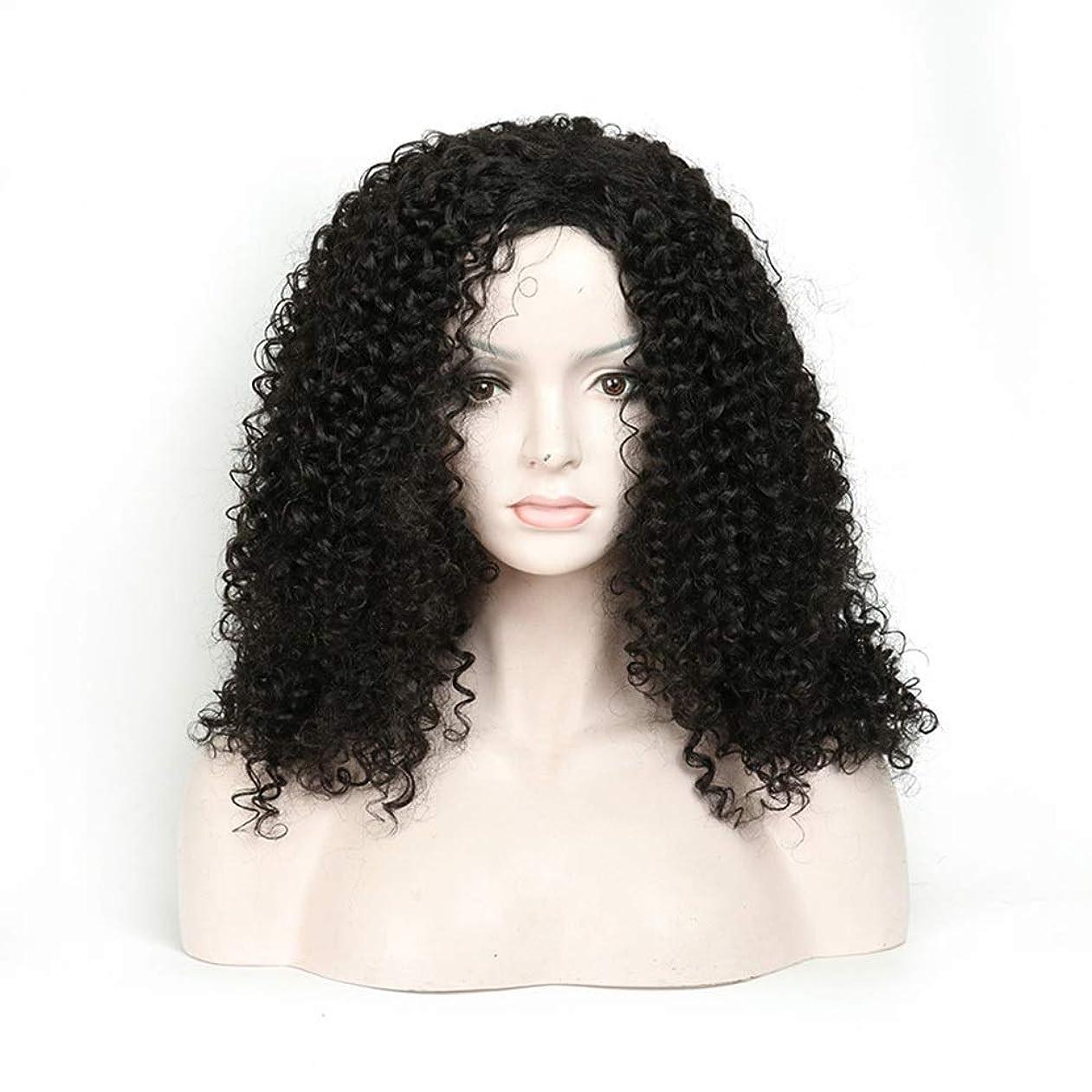 ペルー年死すべきMayalina 人工毛アフリカブラックロングカーリーウィッグ18インチ女性用デイリードレスパーティーウィッグ (色 : 黒)