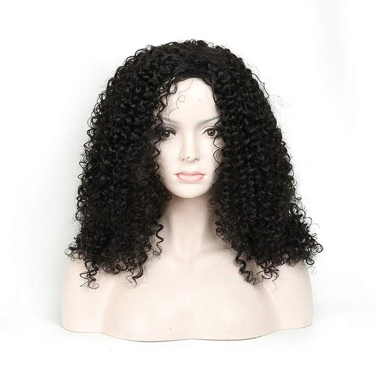 だらしない男性見捨てられたYrattary 人工毛アフリカブラックロングカーリーウィッグ18インチ女性用デイリードレスパーティーウィッグ (Color : ブラック)