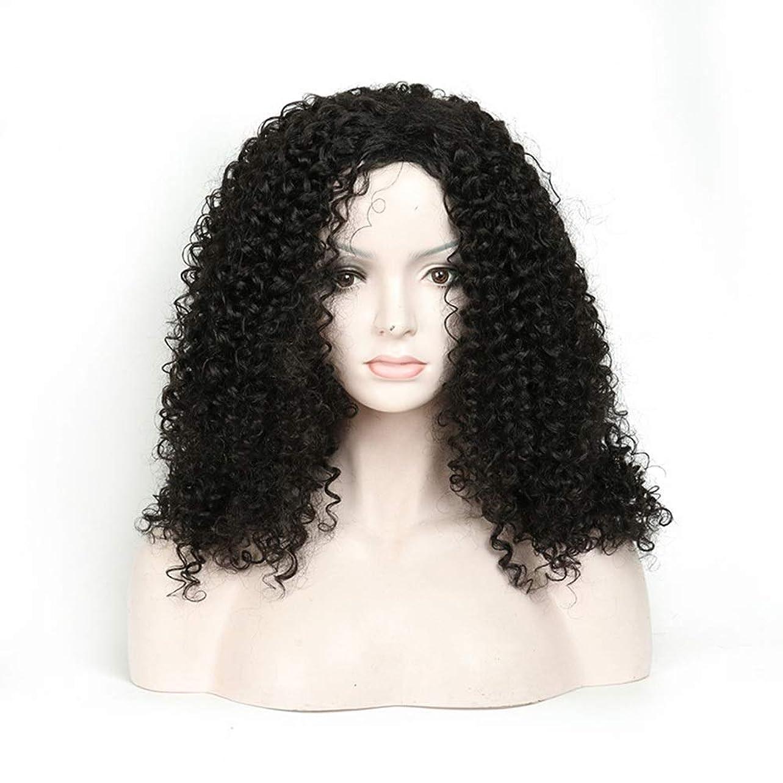 同性愛者検査官たっぷりIsikawan 長い巻き毛のかつら18インチ女性の毎日の服の人工毛のアフリカの黒 (色 : ブラック)
