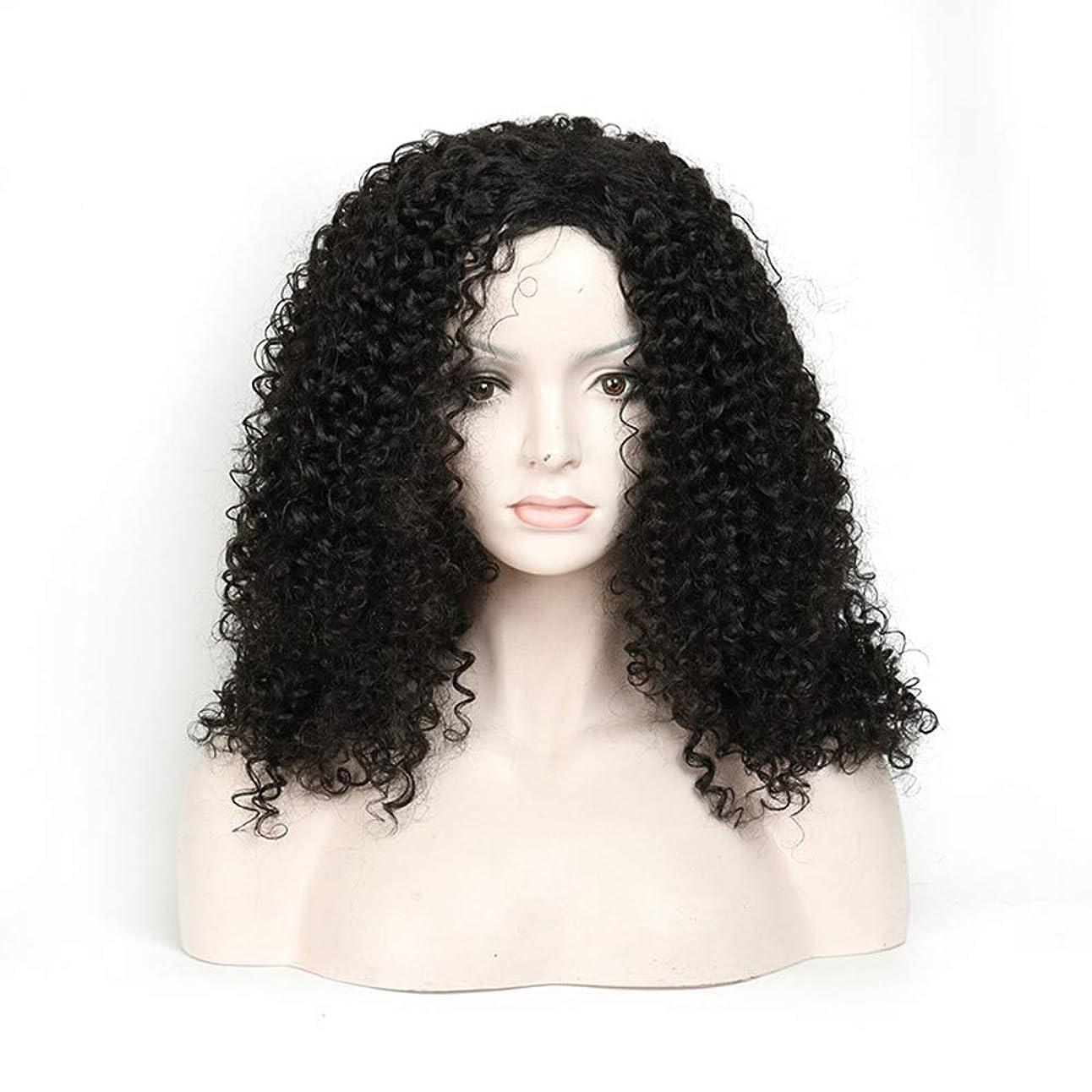 チップモニカクランプIsikawan 長い巻き毛のかつら18インチ女性の毎日の服の人工毛のアフリカの黒 (色 : ブラック)