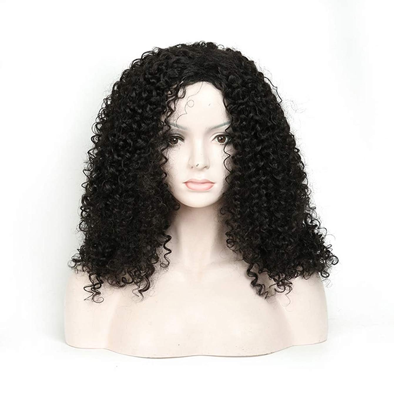 幸運グループ合理化Isikawan 長い巻き毛のかつら18インチ女性の毎日の服の人工毛のアフリカの黒 (色 : ブラック)
