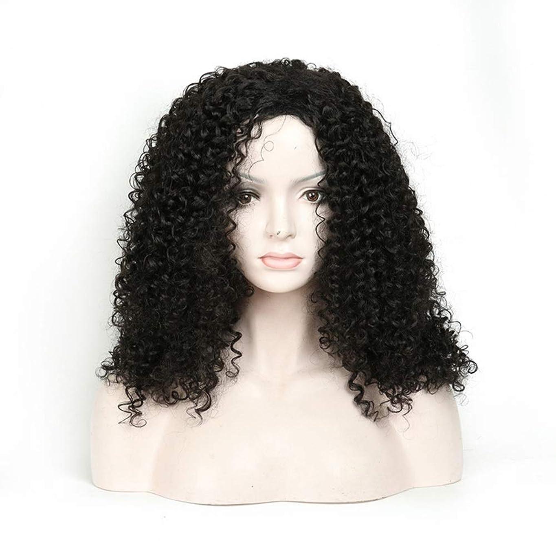 シルエット選ぶ朝食を食べるIsikawan 長い巻き毛のかつら18インチ女性の毎日の服の人工毛のアフリカの黒 (色 : ブラック)