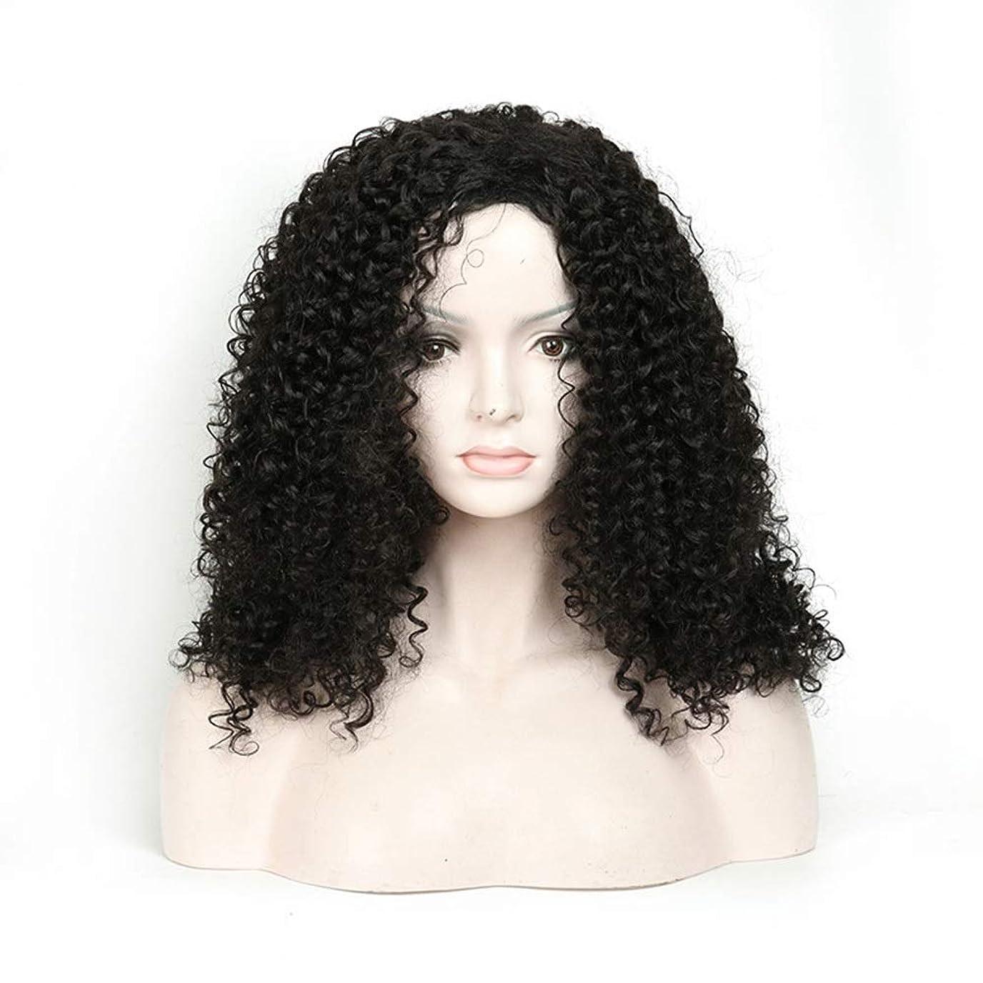 飛行場子孫起きているBOBIDYEE 人工毛アフリカブラックロングカーリーウィッグ18インチ女性用デイリードレスパーティーウィッグ (色 : 黒)