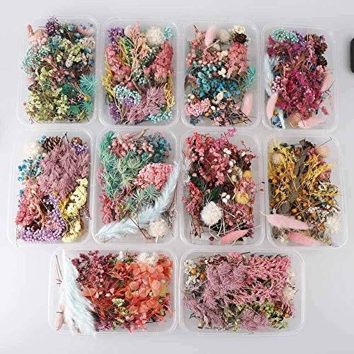 SMXGF 1 doos Random Mix Style Droge Bloemen Decoratie Natuurlijke Bloemen Sticker Dry Beauty Nail Art Decals Epoxy Mold DIY Vullen sieraden