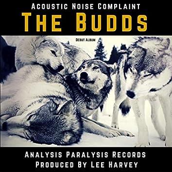 Acoustic Noise Complaint