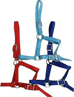 bo/îte Trailer Tie anbinder 90/cm avec mousqueton de panique /élastique et Bull Snap pour clapier /à cheval Pendentif 1