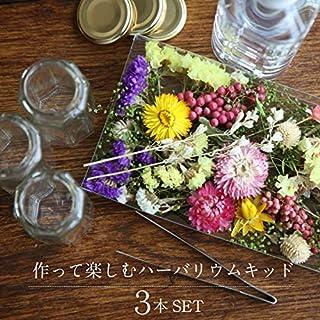 [カドゥ] herbarium Bottle 作って楽しむ・ハーバリウムキット3本セット 花材・ハーバリウムオイル・ハーバリウム用ボトルセット