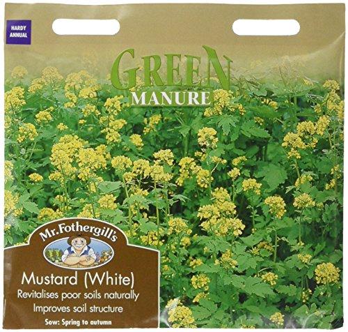 Mr. Fothergill's 16292 Paquet de graines de Moutarde Blanche pour Engrais Vert 70 g