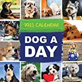 TF PUBLISHING 2021 Dog-A-Day Monthly Wall Calendar - Photographs - Appointment Tracker - Home or Office Planning - Gloss 12'x12'