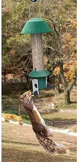 Songbird Essentials Squirrel Defeater Nut Feeder