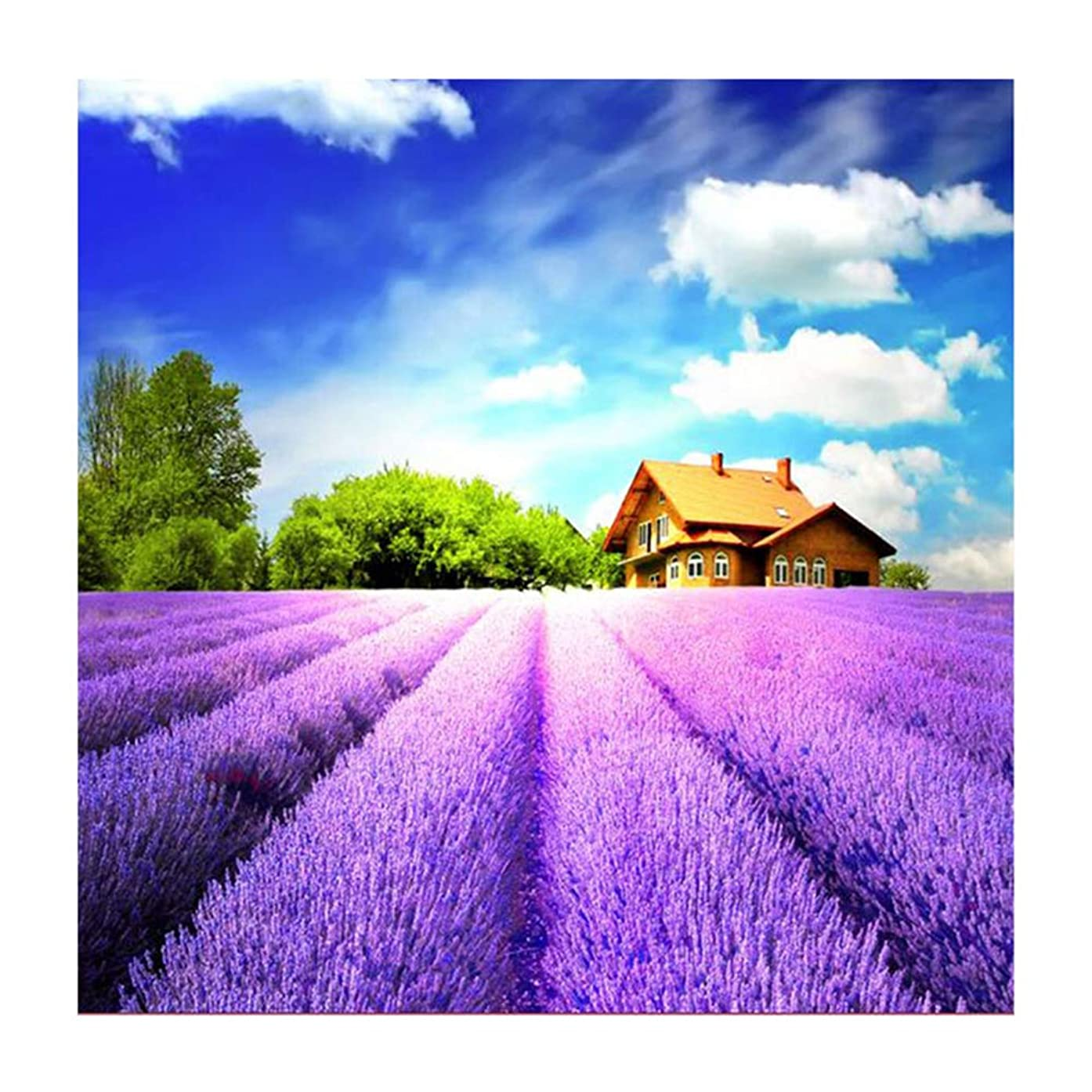 Crafts Graphy 5D DIY Diamond Painting Lavender Landscape Embroidery Cross Stitch Mosaic Rhinestone Decor (12x12inch) Craft for Home Decorations Wall Decor (3056)