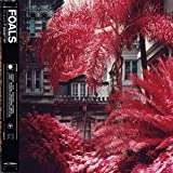 Foals  - Everything Not Saved (LP-Vinilo)