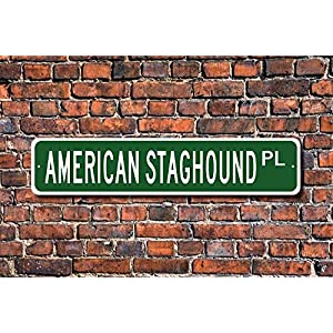Ditooms American Staghound Pit Bull Terrier Sign Dog Lover Gift Street Sign Art Wall Decor Aluminum Metal Sign 45 x 10cm 7