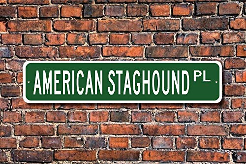 Ditooms American Staghound Pit Bull Terrier Sign Dog Lover Gift Street Sign Art Wall Decor Aluminum Metal Sign 45 x 10cm 1
